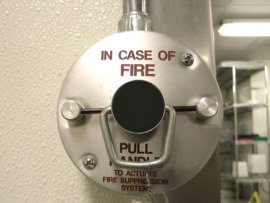 Install Fire Protection Services